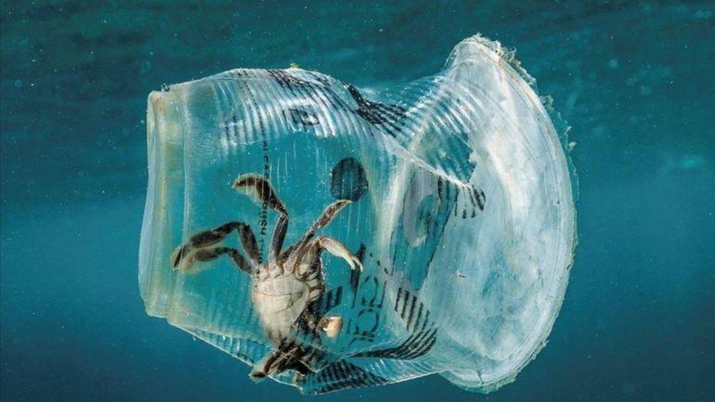 La costa de Barcelona es la segunda con más vertidos de plástico al Mediterráneo