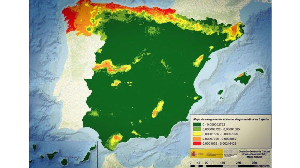 Mapa de riesgo de invasión de la avispa asiática en España / Ministerio para la Transición Ecológica