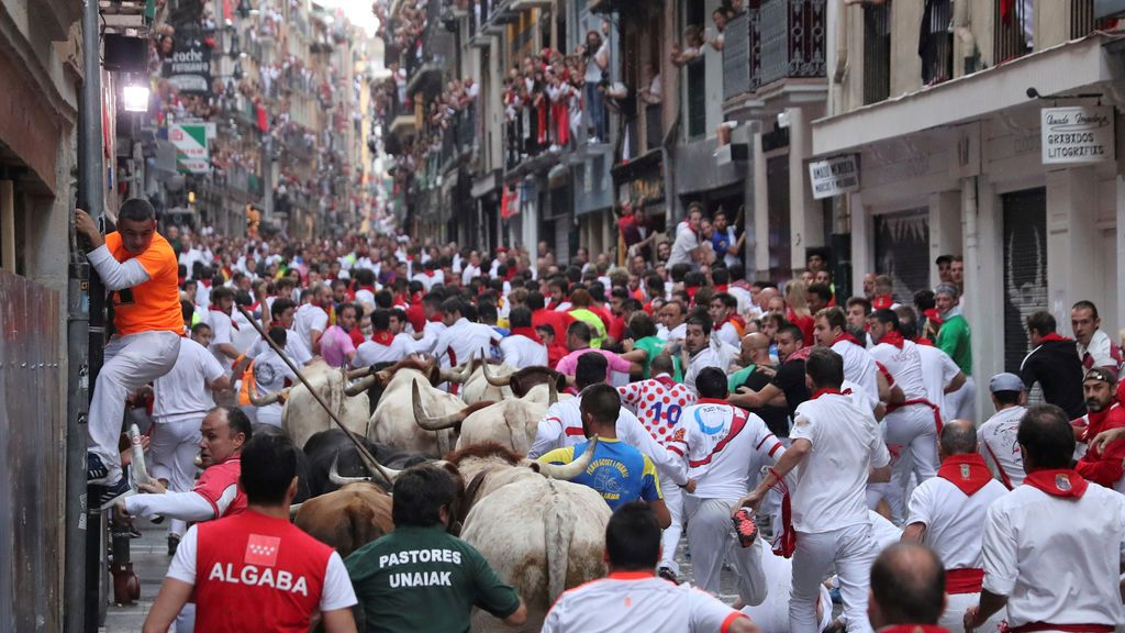 Los caballos de la Policía robarán protagonismo a los toros este San Fermín
