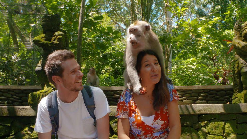 Un mono de 'Monkey Forest' intenta robarle el colgante a la guía de 'Viajeros Cuatro'