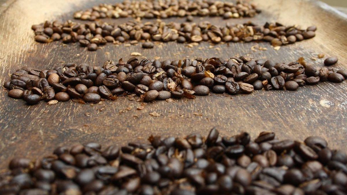 El café más caro del mundo cuesta 67 euros la taza y su grano solo adquiere en una exclusiva subasta