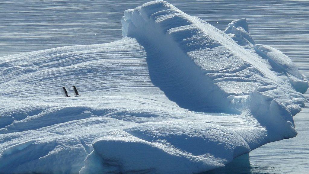 iceberg-329852_960_720