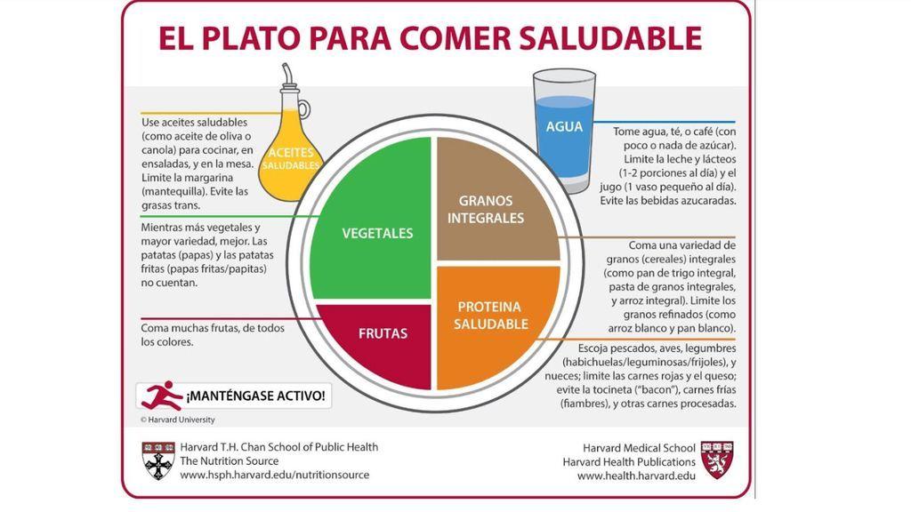 Plato comer saludable