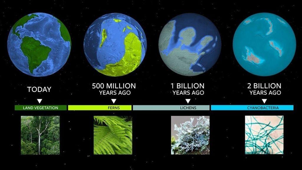 Los hitos biológicos terrestres, guía para buscar vida en otros mundos