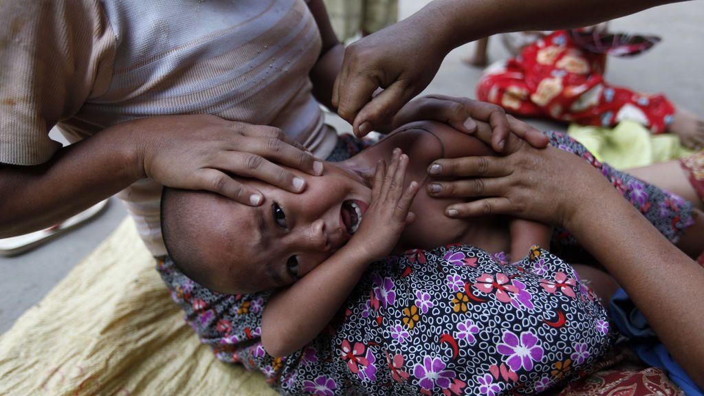 """¿Puede eliminarse la malaria con """"mosquitos zombies""""?"""