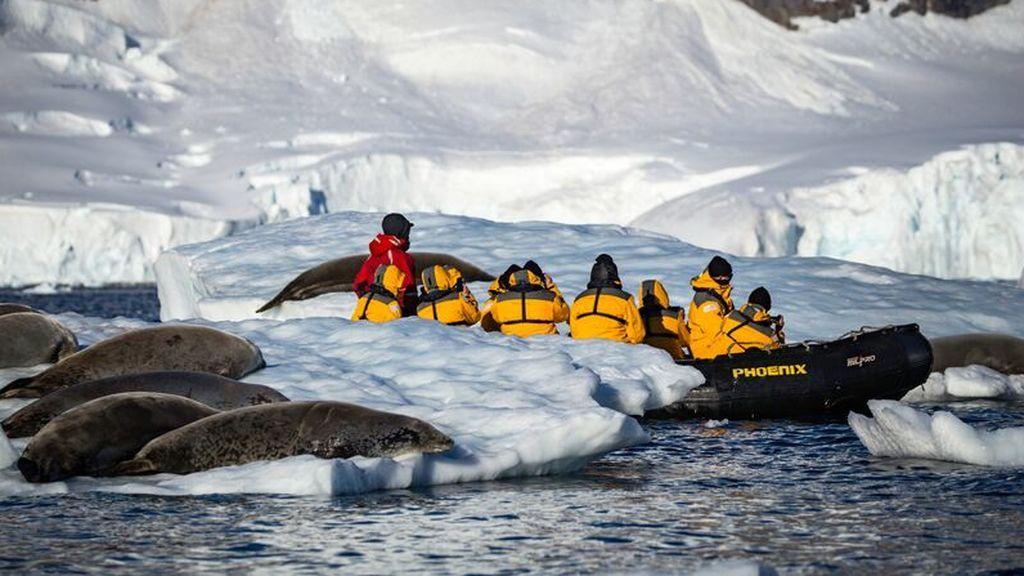 Turistas en la Antártida: el continente de hielo ya no es exclusivo para investigadores