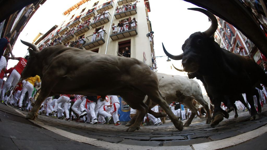Los toros de Nuñez del Cubillo protagonizan un encierro emocionante y fluido con un corneado