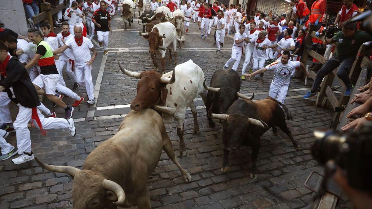 Los toros de Núñez del Cubillo dejan un sexto encierro emocionante con un herida por asta de toro