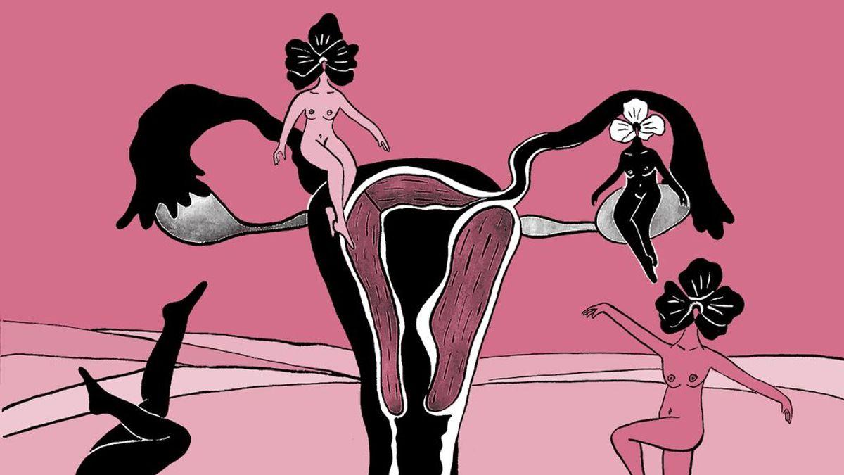 La 'Pussypedia', tu nuevo lugar favorito para resolver todas las dudas sobre los genitales femeninos
