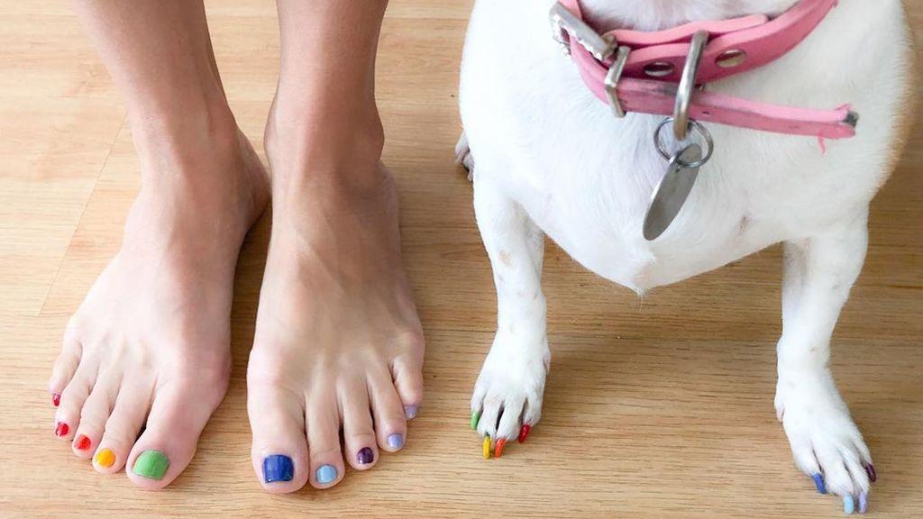 Hacerte la manicura a juego con tu perro: hasta qué punto es una buena idea