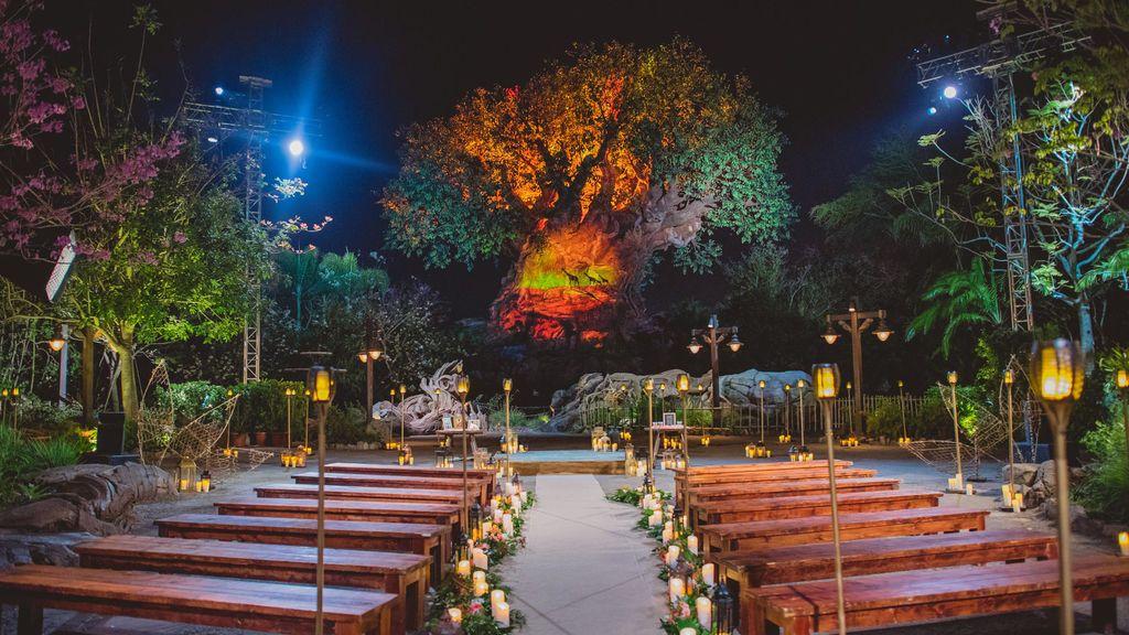 wedding-disney