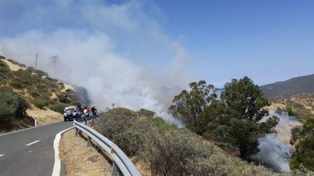 El Cabildo de Gran Canaria declara el nivel 1 por el incendio de Artenara