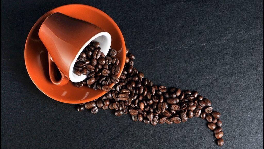 Por qué vamos al baño cuando bebemos café: un estudio con ratas lo revela