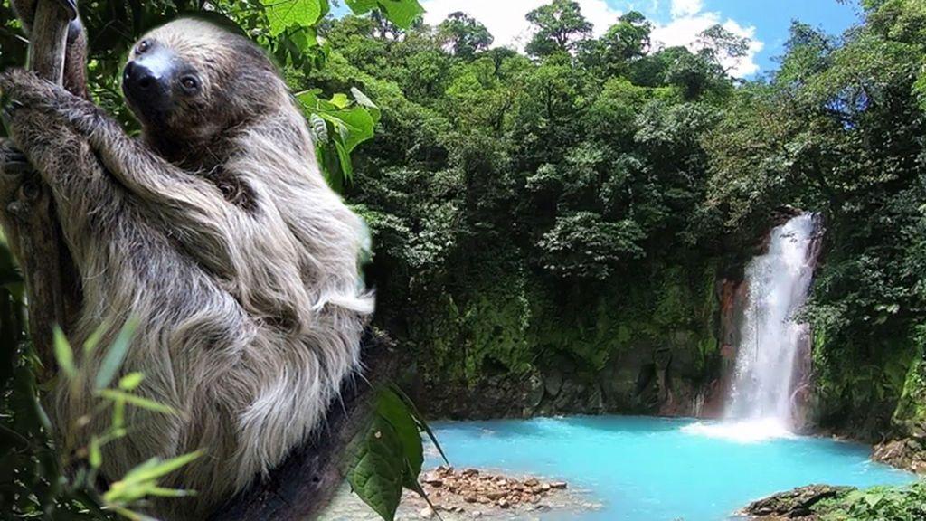 Los secretos escondidos del volcán Tenorio: ríos de agua azul celeste, perezosos y serpientes mortíferas