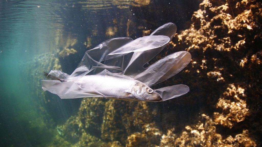 Detectan casi 4 toneladas de plástico entre las islas de Mallorca y Menorca