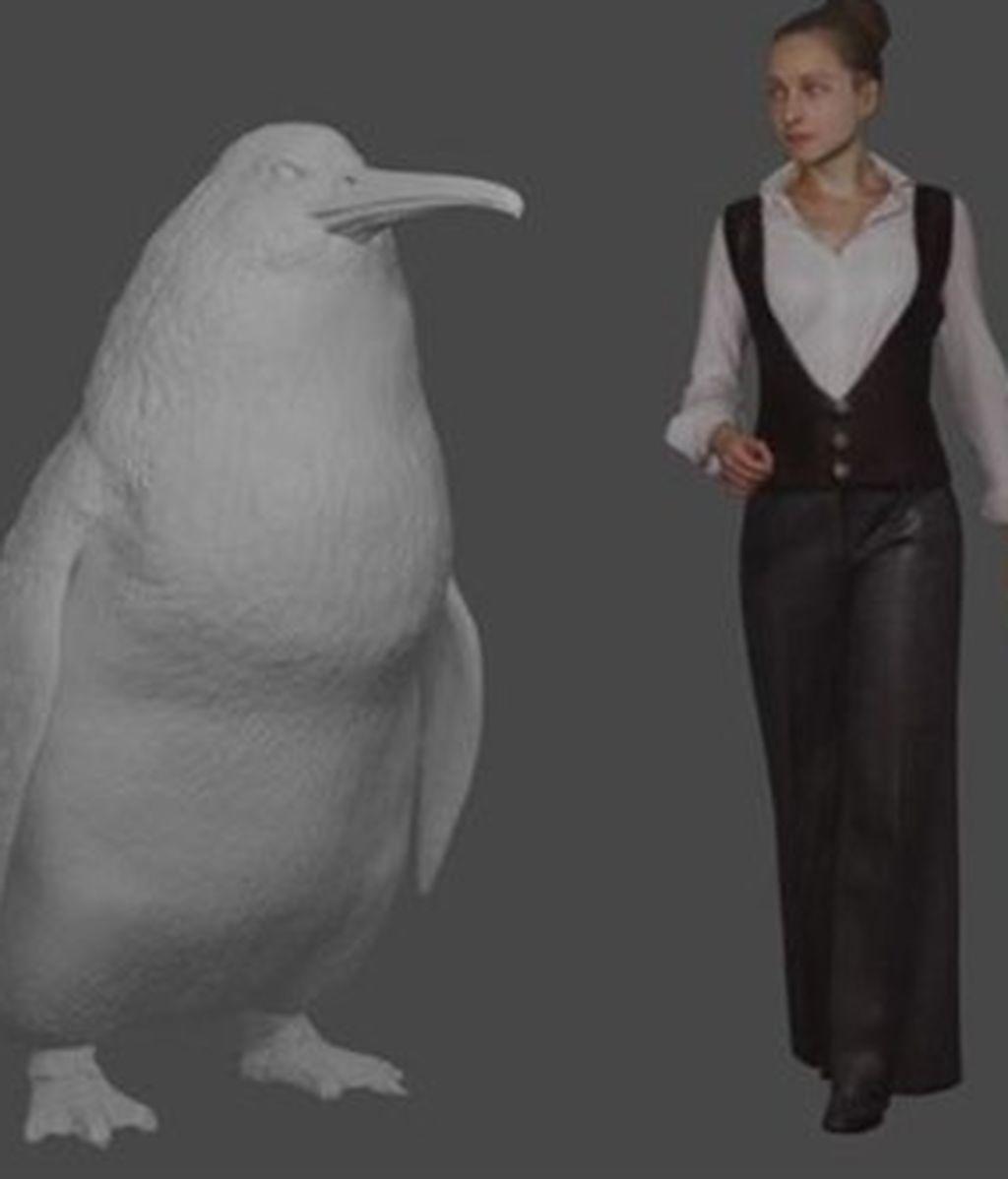 Descubren fósiles de un pingüino de tamaño humano
