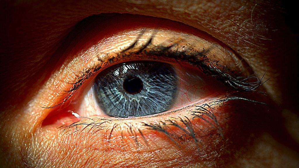 eye-1986661_1920