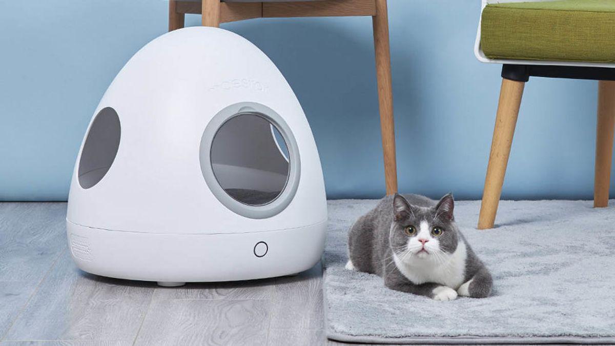 Lanzan un crowdfunding para crear una casita con aire acondicionado para mascotas