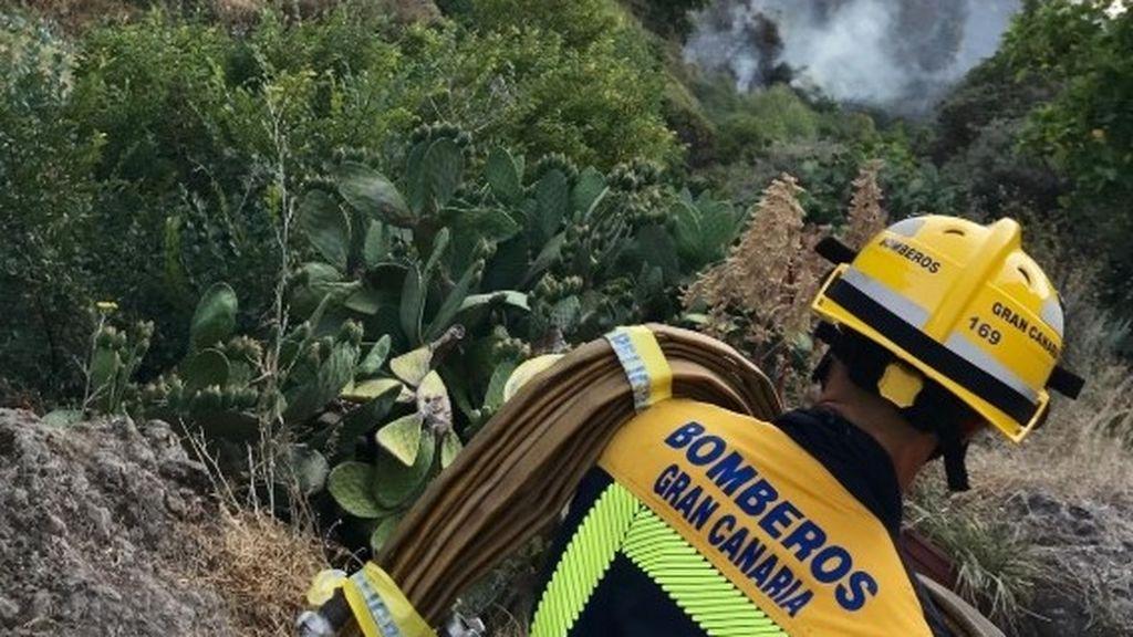 """La recuperación completa del incendio del centro de Gran Canaria tardará """"al menos 20 años"""""""