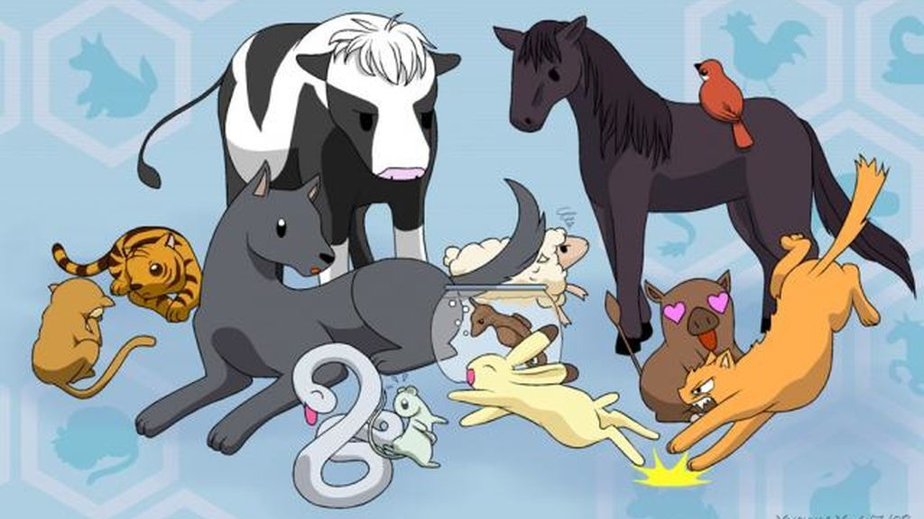 Dinos tus gustos y te diremos cuál sería tu signo en el horóscopo de los animales