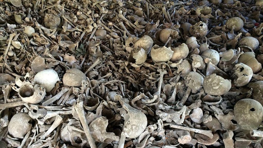bone-664596_960_720