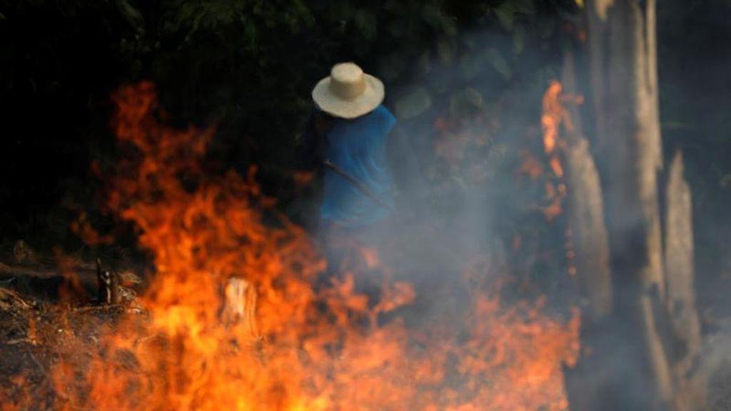 Las llamas del Amazonas arrasan con el ecosistema brasileño un 80% más que en 2018