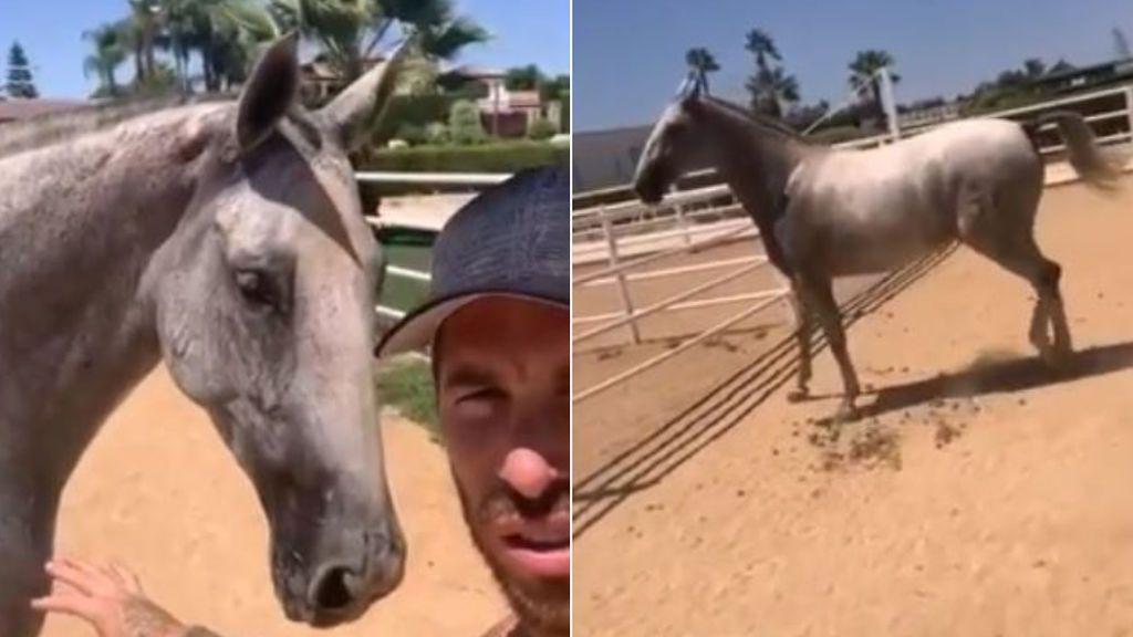 """El susto de Sergio Ramos con su nueva yegua: """"Buuf, buuf, casi ná"""""""