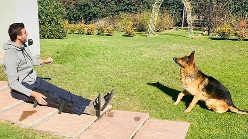"""El emotivo mensaje de Del Potro al perder a su segundo perro en menos de un año: """"Gracias por haber sido mi gran compañero"""""""