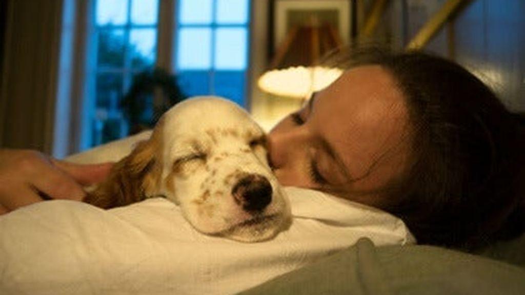 chica-durmiendo-con-perro