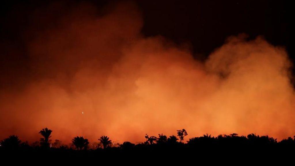 Varios estados de Brasil solicitan ayuda militar para combatir los incendios forestales en el Amazonas
