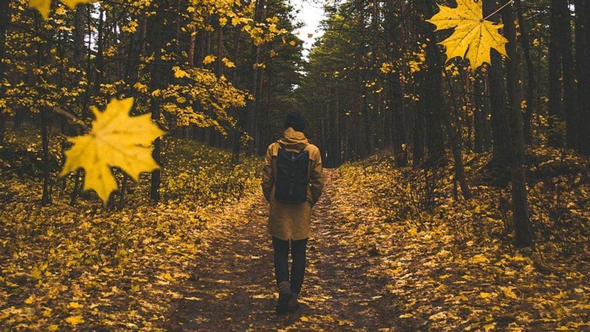 El verano va llegando a su fin: averigua qué destino va más contigo este otoño según tu personalidad