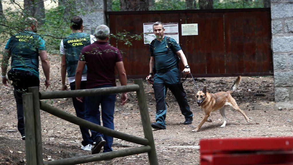 Policía y Guardia Civil coordinan la búsqueda de Blanca Fernández Ochoa con bomberos y agentes forestales