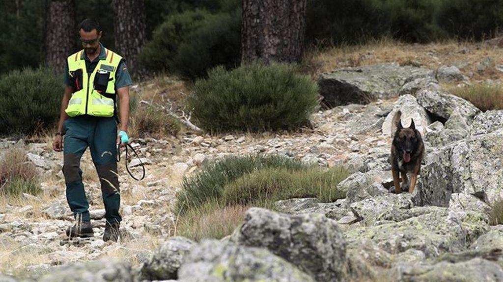 Los perros de la Guardia Civil marcan varios sitios para seguir la pista de sobre Blanca Fernández Ochoa