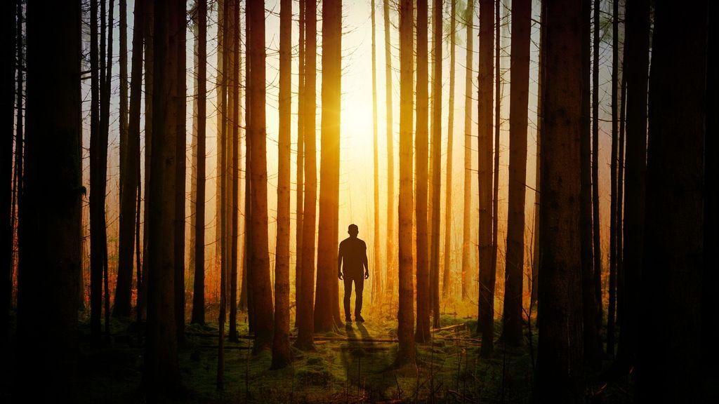 Un chico de 27 años se pierde en un bosque, se despide de sus seguidores en broma y después muere
