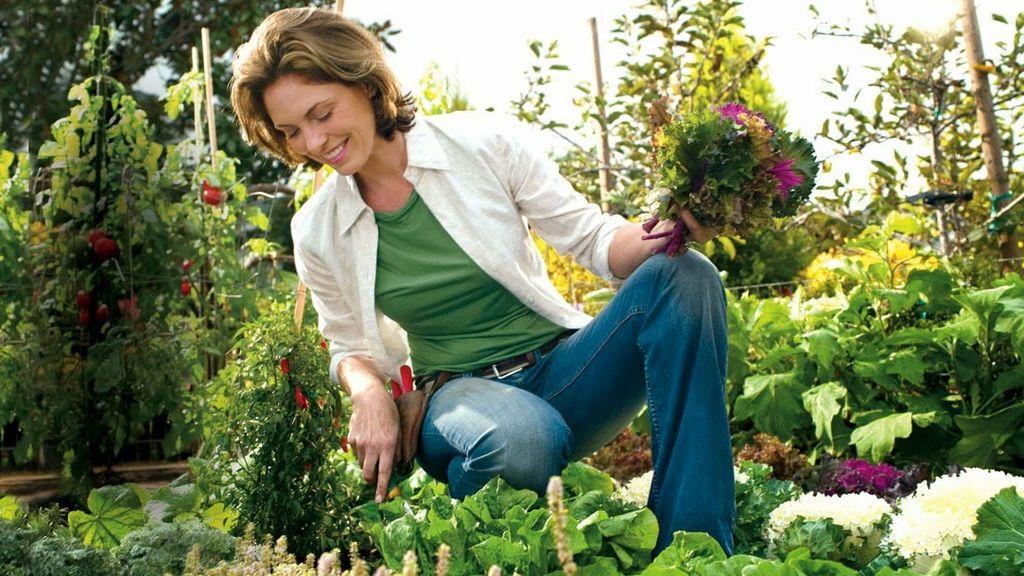 Por qué la jardinería puede ser más eficaz para combatir la ansiedad y la depresión que los medicamentos