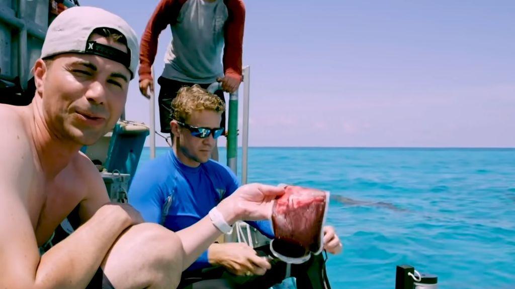Un youtuber se prueba a sí mismo: Extrae su propia sangre en aguas llenas de tiburones