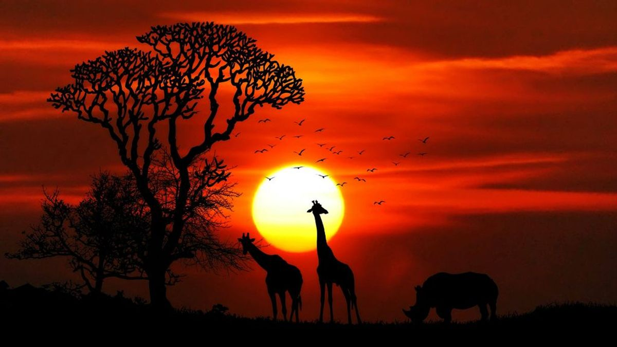 El corazón de África está en llamas (pero el verdadero problema es la sequía)