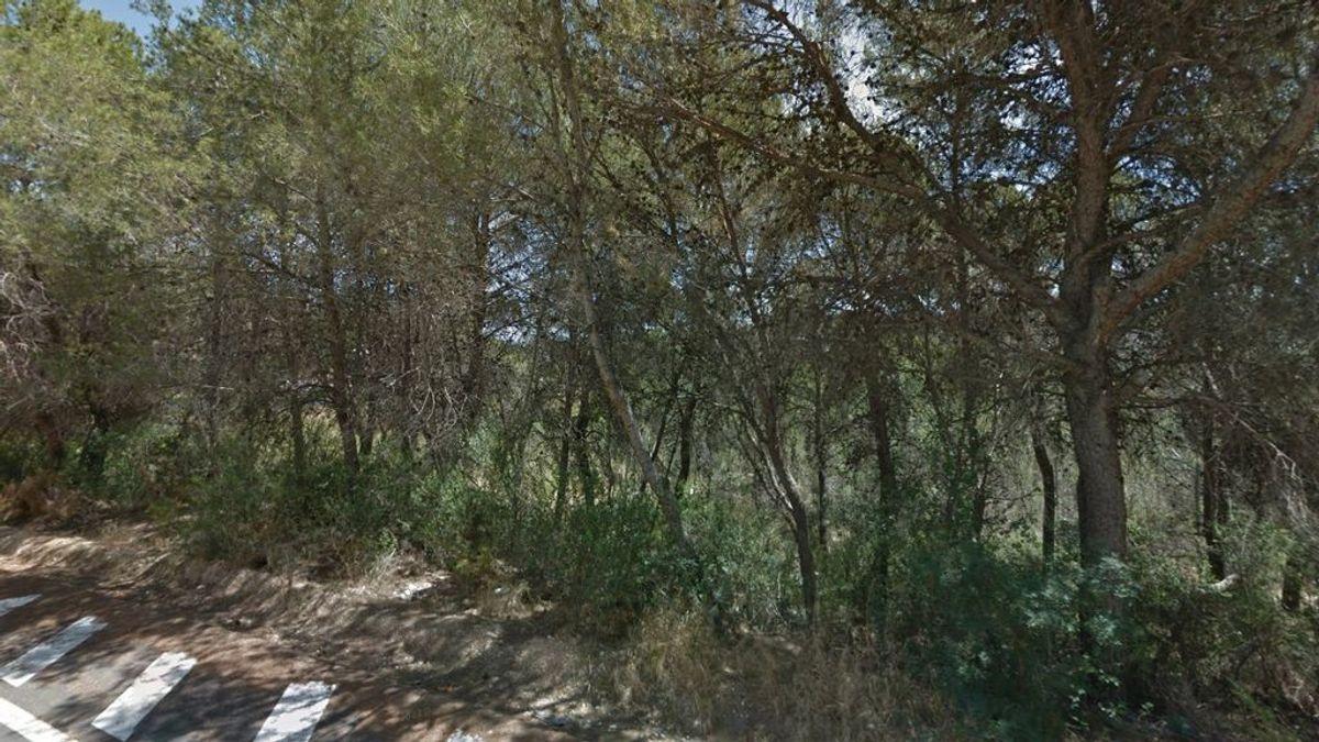 Encuentran viva a una joven de 21 años desaparecida hace 5 días en Valencia