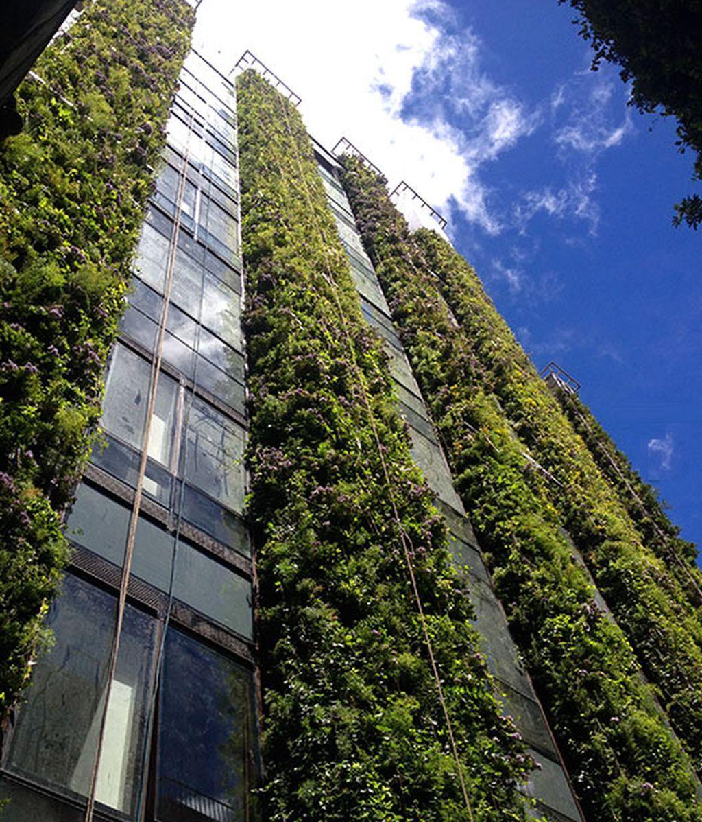 jardin-vertical-mas-grande-del-mundo