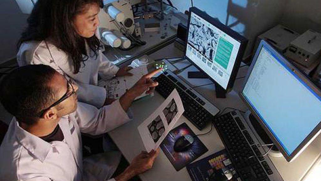 El virus del papiloma humano se podría contagiar a través de la sangre