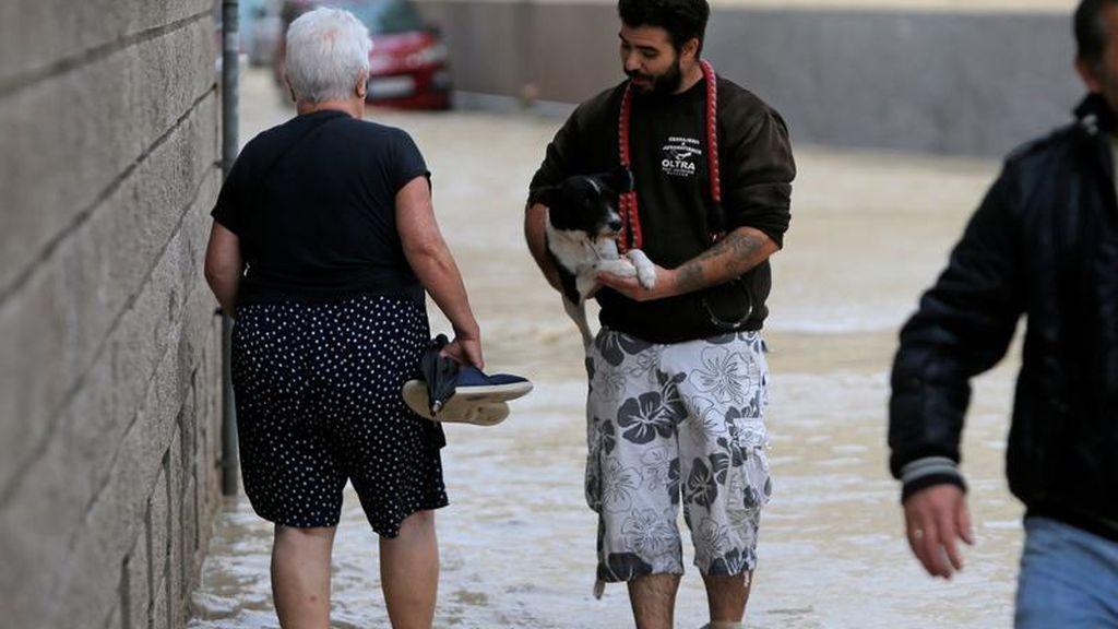 Un joven camina con su perro en brazos por una calle totalmente inundada en Orihuela