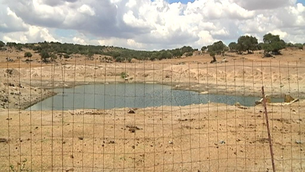 Balsas secas en Extremadura
