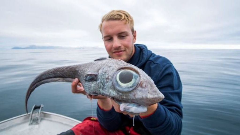 Óscar Lundahl junto al pez que pescó,  una 'quimera común'