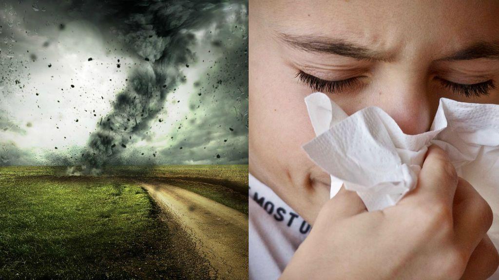 El impacto del cambio climático sobre nuestra salud: aumentan los riesgos de enfermedad