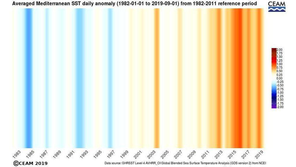 SST-NCEI-anomaly-warming-stripe