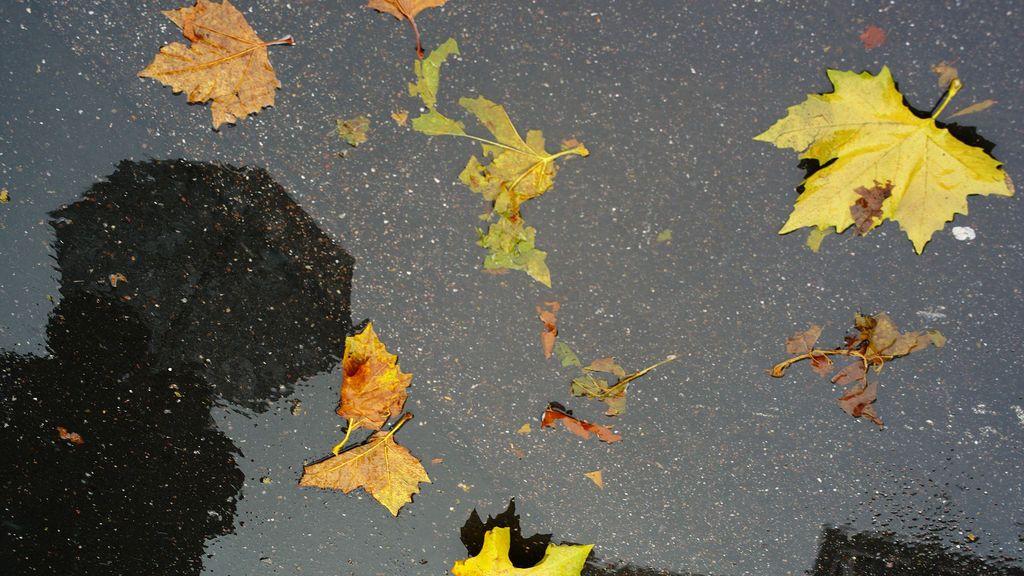 Podría repetirse el calor de años anteriores: el tiempo que te espera en el arranque del otoño