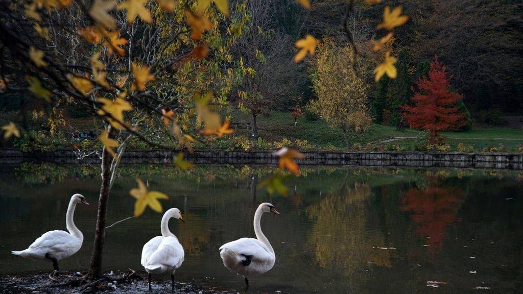 Adiós, verano: qué tiempo te espera la primera semana del otoño