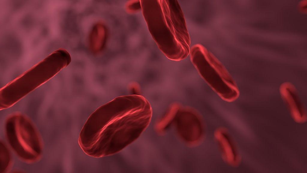 Investigadores encuentran un nuevo método para acabar con una bacteria resistente a los antibióticos