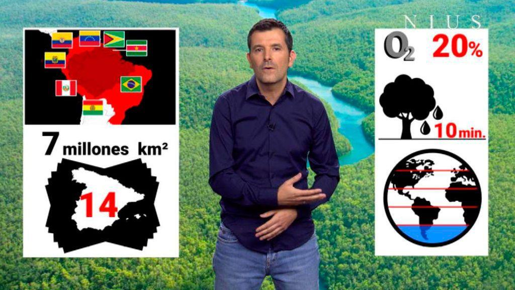 Lo que Bolsonaro no quiere escuchar sobre la Amazonia en la Cumbre del Clima