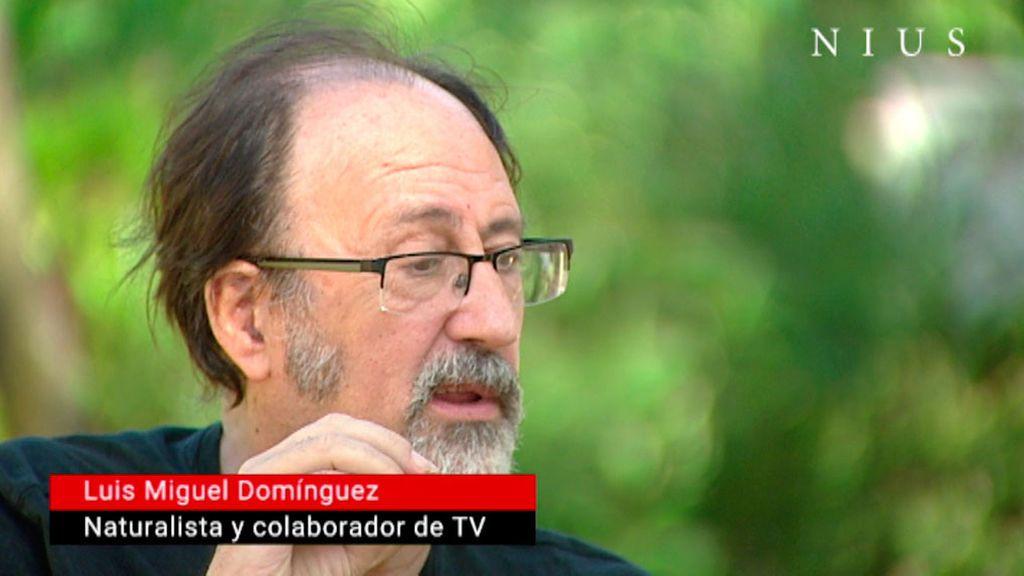 """Luis Miguel Domínguez: """"La muerte es seducción"""""""